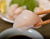 訳あり『天然ホタテ貝柱(刺身用)』北海道産 約1kg ※冷凍