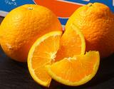 『超大玉 清見オレンジ』 愛媛県三崎産柑橘  3L〜4Lサイズ(目安6〜8玉) 約2kg ※常温