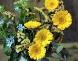 葛西市場よりお届け『季節のお花 色はおまかせセット』生花 3品種前後 20本以上 ※常温