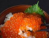 アラスカ産 塩いくら(鱒卵) 1kg 冷凍