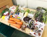 【フードロス削減・販売応援】百貨店の食材+八百屋(菜根たん)の食材詰め合わせ 1箱 ※冷蔵