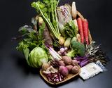 さぬき こだわり市厳選『朝穫れ直送!野菜セット(目安として7〜12種類)』 香川県産 ※冷蔵