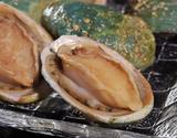 高級美食あわび『翡翠の瞳』オーストラリア産 化粧箱 2Lサイズ 約1kg(10粒前後) ※冷凍