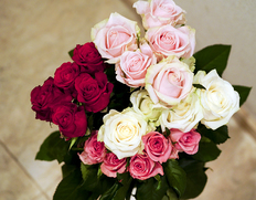 悩める花き市場、産地から季節の花を直送
