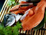 【相場下落】生時鮭(ときしらず)北海道産 1尾加工無 約3kg ※冷蔵【豊洲市場直送】