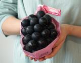 JA全農長野管内 黒ぶどう『ナガノパープル』 長野県産 大房 2房 合計約1.2kg 簡易包装 ※冷蔵