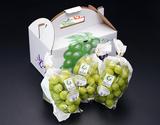 東御こもだ果樹園『シャインマスカット』長野県産 約400g×3房 約1.2kg ※冷蔵