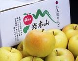 『とき』青森県産りんご 約3kg(7〜15玉入) 岩木山りんご生産出荷組合 産地箱 ※常温