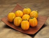 『西条柿』 鳥取県八東産 秀品 2〜3L 約1kg(6〜7玉) ※常温
