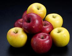 全国のりんごを豊洲市場&産地から直送!