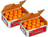 JA長崎せいひ『大玉手詰め 長崎みかん』 長崎県産柑橘 2〜3Lサイズ 約4.5kg×2箱 産地箱入 ※常温
