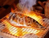 長崎県産『旬さば(ときさば)』 塩さば (1袋 2枚入り約220g)×5パック ※冷凍