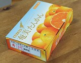 奄美大島『タンカン』 M〜Lサイズ 約2.5kg 15〜20玉前後 化粧箱入※常温