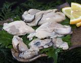 加熱調理用『サイズ不揃い剥き牡蠣』広島県産 NET850g (総重量約1kg) ※冷凍