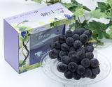 『種なし巨峰』山梨県産 ぶどう (1箱:2房約750g)×1 化粧箱 ※冷蔵 JAふえふき