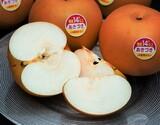 『一糖賞(梨)』糖度14度以上 新潟県しろね地区 品種:あきづき梨 約5kg(12〜18玉) 産地箱 ※常温