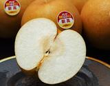 『一糖賞(梨)』糖度13.5度以上 新潟県しろね地区 品種:新高 約5kg(5〜10玉) 産地箱 ※常温
