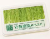 『芽ネギ』愛知県産 約10g S