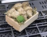 『松茸』アメリカ産 無選別 約150g前後 すだち付き ※冷蔵 S
