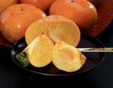 『浜北次郎柿』静岡県産 1玉(約200g) ※冷蔵 S