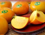 『太秋柿』愛媛県産 2玉(約250g/玉) ※冷蔵 S