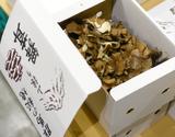 『秘境舞茸』群馬県産  1箱(約500g) ※冷蔵 m