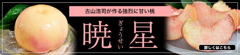 古山さんの暁星 特集ページ